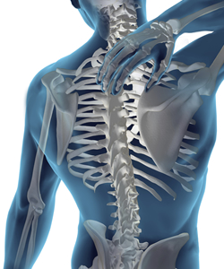 As the human spine ages, a number of conditions can result in chronic